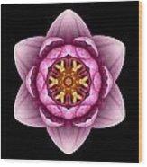 Water Lily X Flower Mandala Wood Print