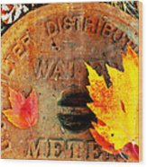 Water Meter Cover With Autumn Leaves Abstract Wood Print