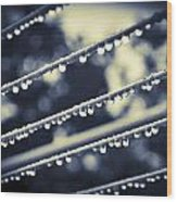 Water On Clothes Line Wood Print