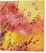 Water On Color Design Nine Wood Print