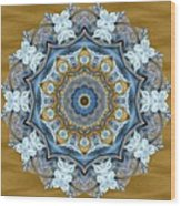 Water Patterns Kaleidoscope Wood Print