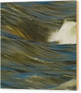 Water Play Wood Print by Bill Gallagher