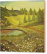 Water Pond Wood Print