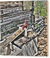 Water Pump In Nature Wood Print