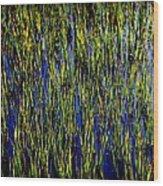 Water Reeds Wood Print by Karen Wiles