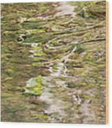 Water Reflection Wood Print