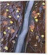 Water Ribbon Wood Print