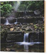 Water Steps In Fairmount Park Wood Print