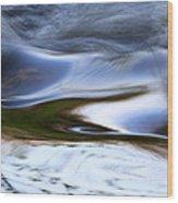 Water Swallow Wood Print