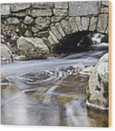 Water Under The Bridge Wood Print by Andrew Pacheco
