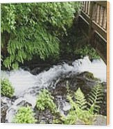 Water Under The Bridge I Wood Print