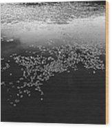 Water Way 2  Wood Print