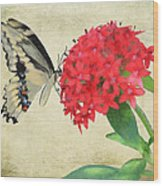 Watercolor Butterfly Wood Print