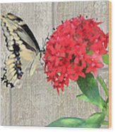 Watercolor Butterfly Two Wood Print