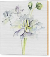 Watercolor Illustration With Beautiful Flowers  Wood Print