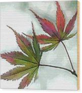 Watercolor Japanese Maple Leaves Wood Print