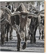 Watercolor Longhorns Wood Print