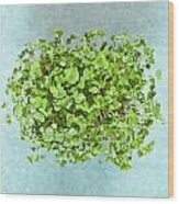 Watercress Wood Print