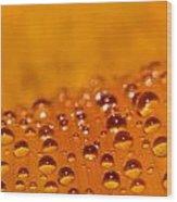 Waterdrops2 Wood Print by Amr Miqdadi