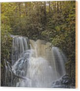 Waterfall After The Rain Wood Print