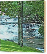 Waterfall And Hammock In Summer 2 Wood Print