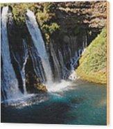 Waterfall And Rainbow 4 Wood Print
