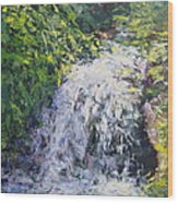 Waterfall At Chicago Botanic Gardens Wood Print