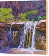 Waterfall At Coyote Creek Wood Print
