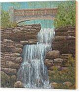 Waterfall At East Hampton Wood Print