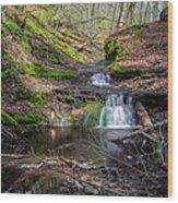 Waterfall At Parfrey's Glen Wood Print