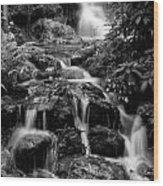 Waterfall At Rainbow Springs Wood Print