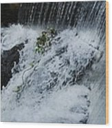 A Waterfall In Bantry, Ireland Wood Print