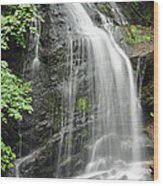 Waterfall Bay Of Fundy Wood Print