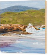 Waterfall Beach Denmark Painting Wood Print
