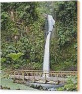 Waterfall Bridge Wood Print
