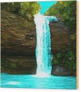 Waterfall Dreams Wood Print