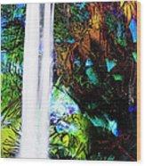 Waterfall Enchantment II Wood Print