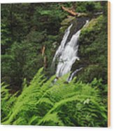 Waterfall Fern Square Wood Print