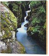 Waterfall, Glacier National Park Wood Print