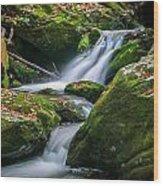 Waterfall Great Smoky Mountains  Wood Print