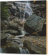 Waterfall In A Forest, Arethusa Falls Wood Print