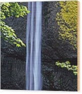 Waterfall In A Forest, Latourell Falls Wood Print