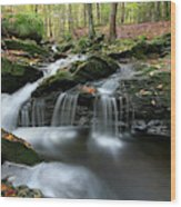 Waterfall In Autumn Woods Wood Print