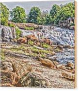 Waterfall In Contrast Wood Print