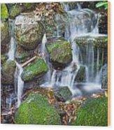 Waterfall In Marlay Park Wood Print