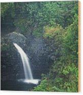 Waterfall In Rainforest Hana Highway Maui Hawaii Wood Print