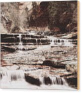Waterfall In Sepia Wood Print