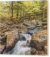 Waterfall In The Fall Nh Wood Print