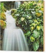 Waterfall In The Hosta Wood Print