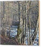 Waterfall In Winter Wood Print